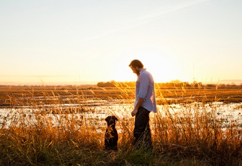 dog and man in field