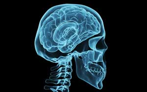 brain injury information